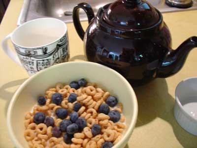 Organic cereal and blueberries
